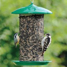 Bird Feeders/Seed