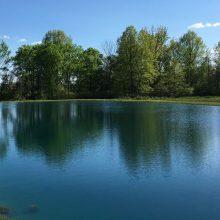 Pond Chemicals & Supplies