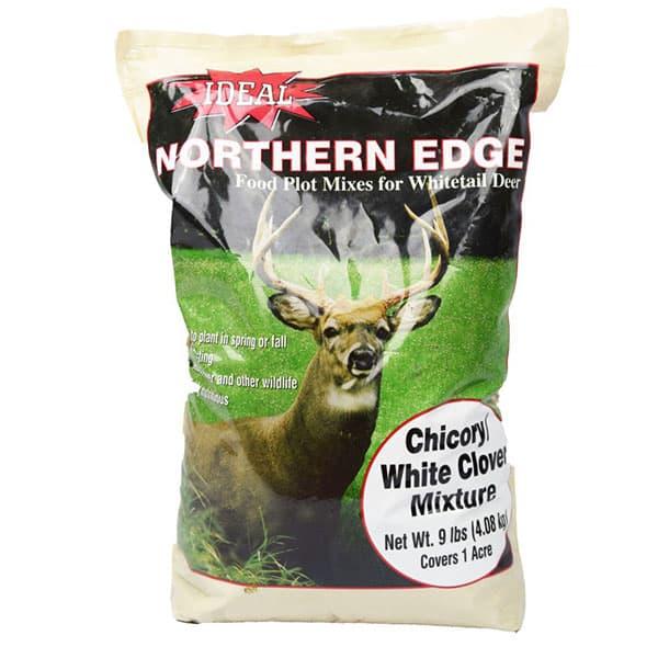 NORTHERN EDGE CHICORY WHITE CLOVER